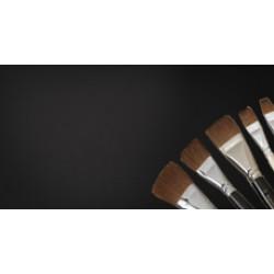 Varnishes & Brushes
